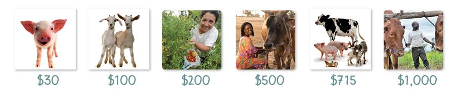 ELCA World Hunger's Global Farm Challenge